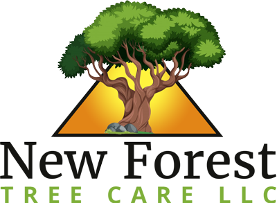 New Forest Tree Care LLC